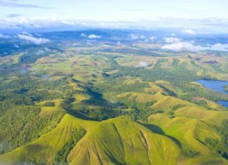 Krajina Nové Guineje | belikova/123RF.com