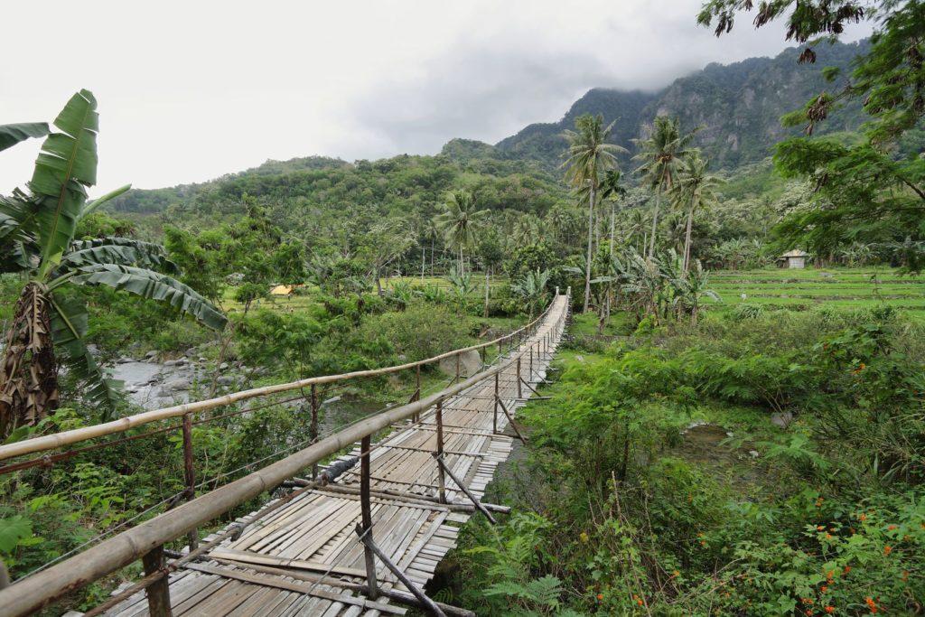 Tropická krajina na cestě do Bajawa | estivillml/123RF.com