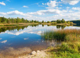 Estonská krajina | arsty/123RF.com