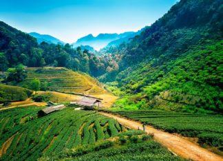 Thajská krajina | thegoatman/123RF.com