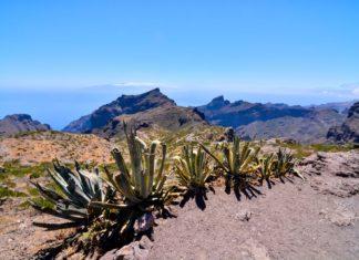Krajina na Kanárských ostrovech | underworld/123RF.com