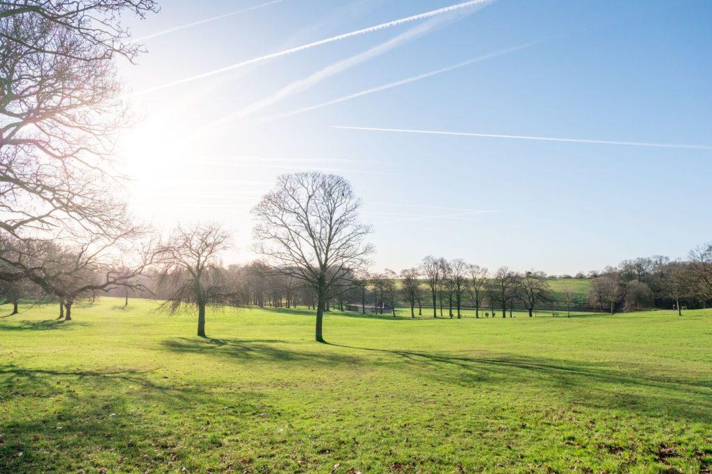 Roundhay Park v Leedsu   moomusician/123RF.com