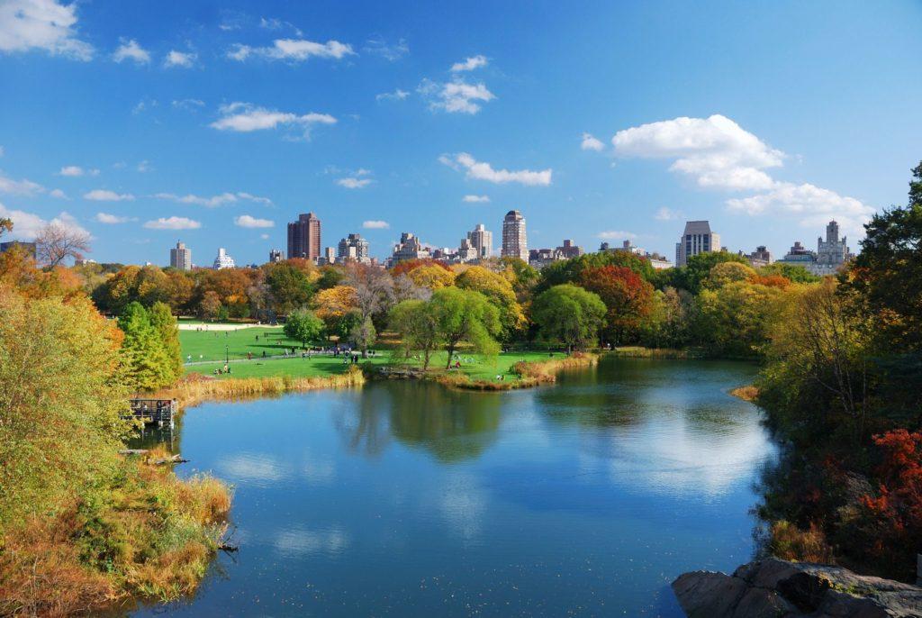 Central Park v New Yorku   rabbit75123/123RF.com