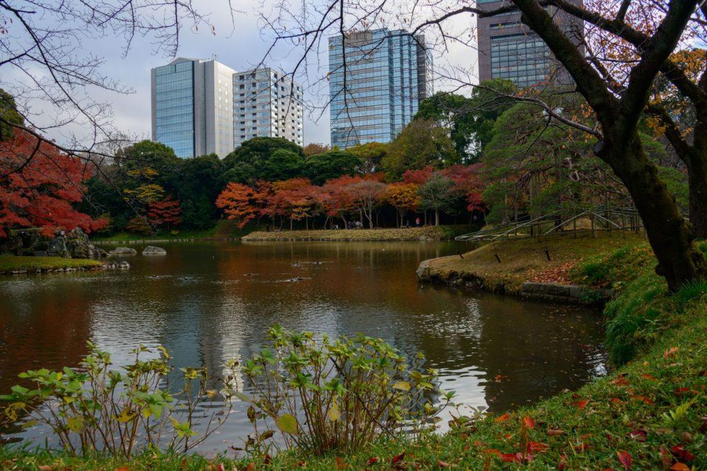 Zahrada Koishikawa Korakuen v Tokiu   hiro1775/123RF.com