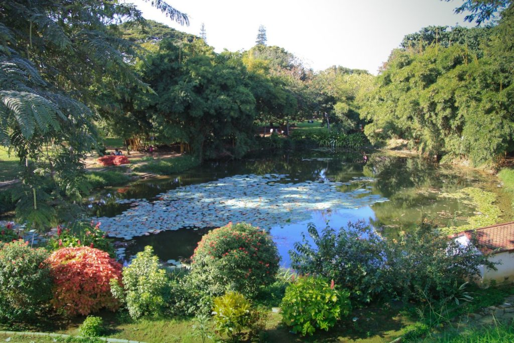 Botanická zahrada Lal Bagh v Bengalúru | atakhar/123RF.com