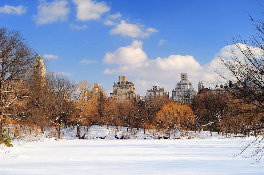 Newyorský Central Park v zimě | rabbit75123/123RF.com