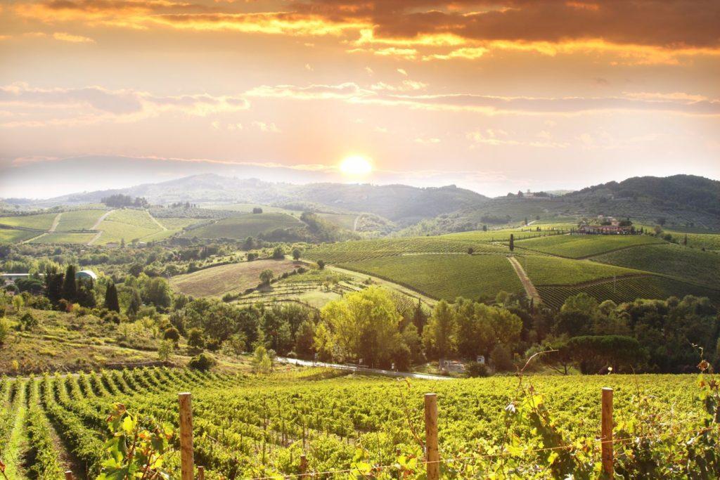 Toskánské vinice v okolí Chianti   samot/123RF.com