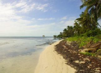Karibská pláž na pobřeží Belize | bbourdages/123RF.com