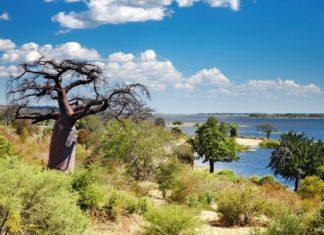 Krajina v africké zemi Botswana | muha/123RF.com