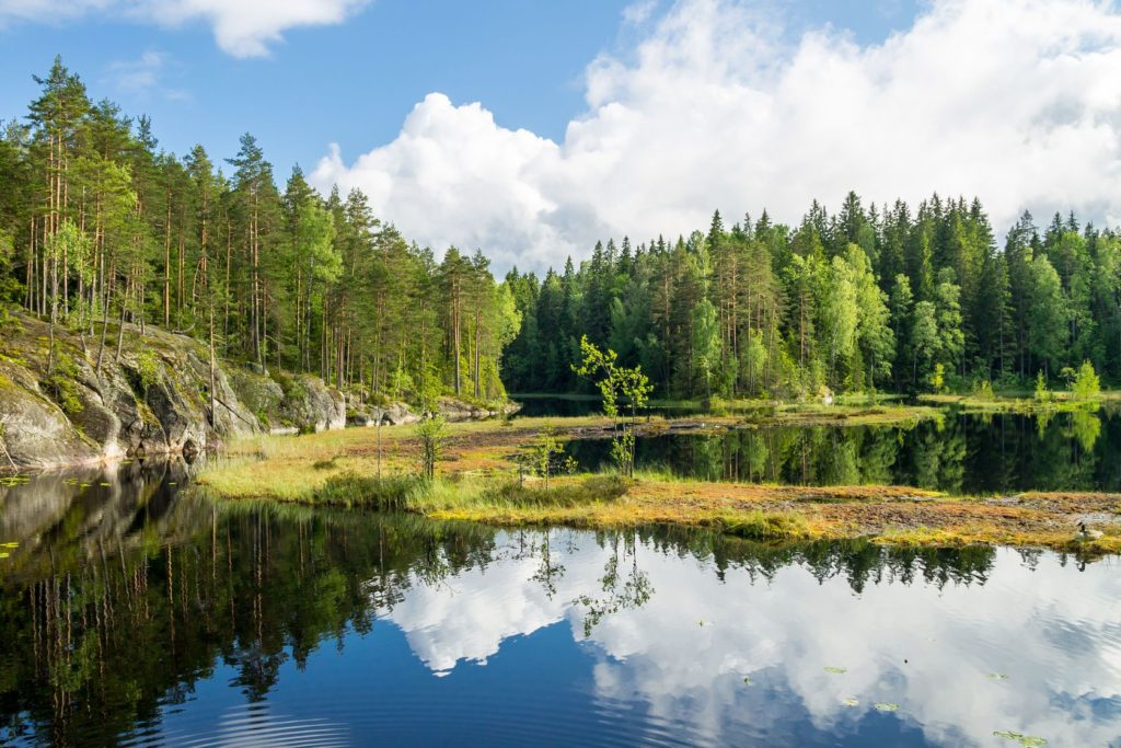 Krajina v národním parku Nuuksio ve Finsku | alexanderphoto/123RF.com