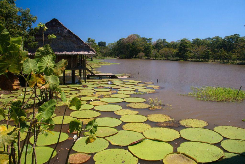 Řeka Amazonka v Kolumbii | sophietraen/123RF.com