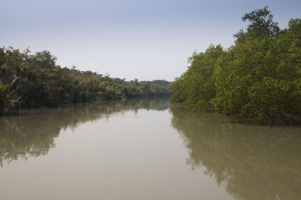 Sundarbanský deštný prales v Bangladéši | waldorf27/123RF.com