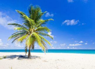 Tropická pláž na Barbadosu | phbcz/123RF.com