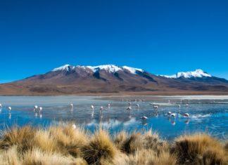Krajina v Bolívii   swissstock/123RF.com