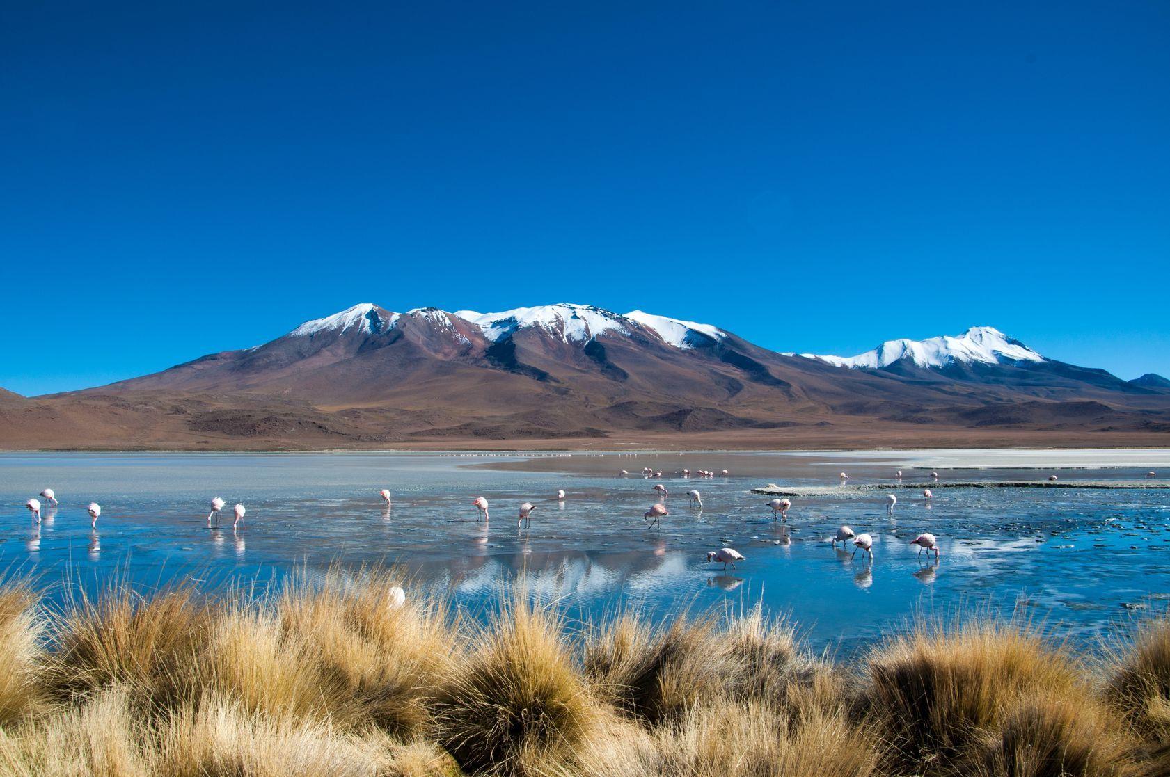 Krajina v Bolívii | swissstock/123RF.com
